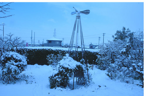 雪100113-4wb.jpg