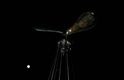 P満月1wb.jpg